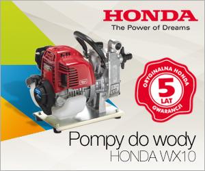 Pompa WX10